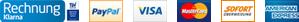 Sofort, Visa, Mastercard, PayPay, American Express, Electron, Laser, Delta, Solo